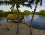 Alternate view of tiki, dock and palms