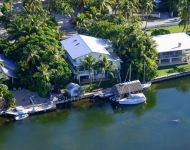 Aerial of tiki and dock